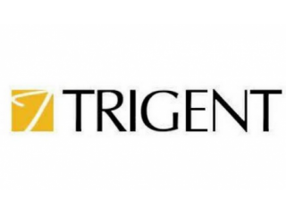 Trigent SoftwareTrigent Software Limited