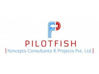 PerigonHumanCapital Solutions (PilotFishKoncepts ConsultantsProjects Pvt Ltd)