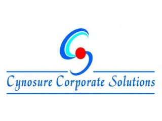 Cynosure Corporate Solutions