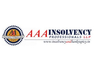 AAA Insolvency Professionals LLP
