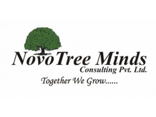 Novo Tree Minds