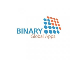 BINARY GLOBAL LIMITED